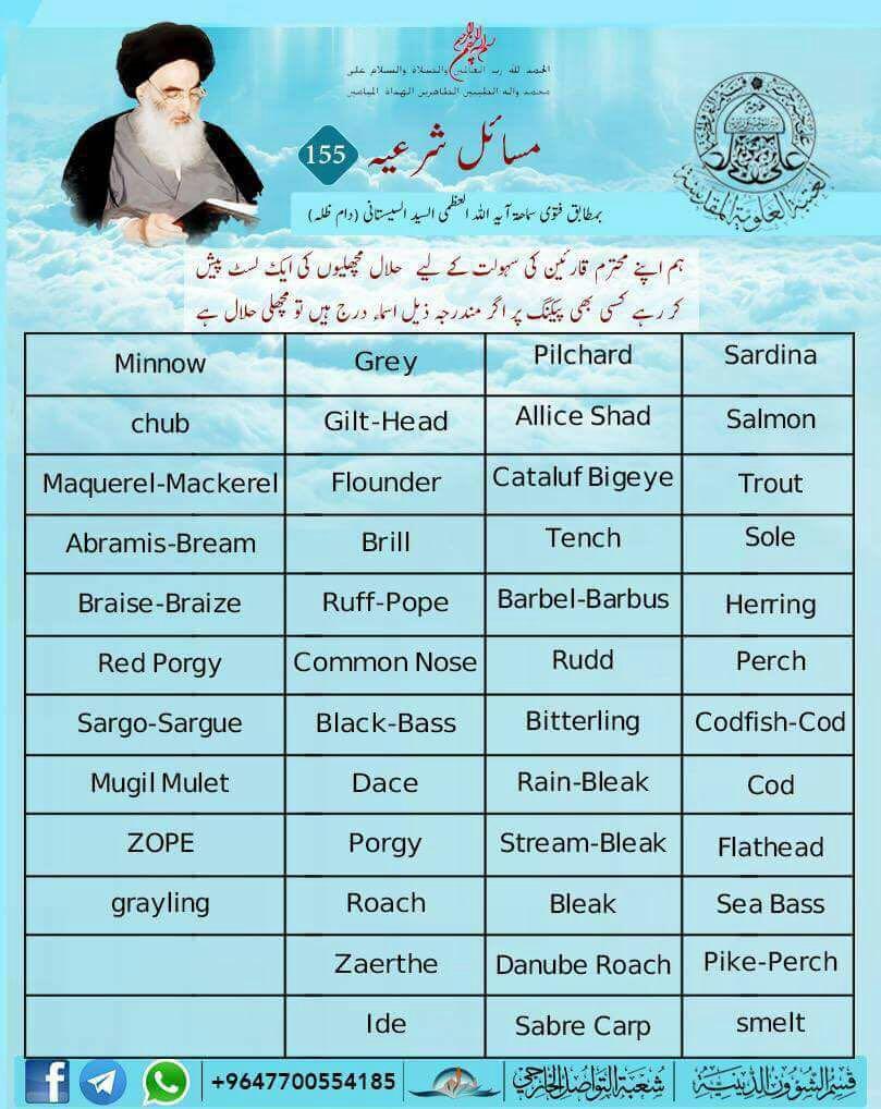 Halal - Haram Food & Drink FISH - ISLAMIC - LAWS
